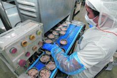 Produção industrial do Ceará acumula queda de 8,2% no ano