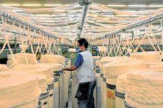 """Recuperação da indústria cearense está """"muito além"""" da média do NE e do País, aponta economista"""